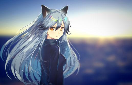 Обои Silver fox / Серебряная лиса из аниме Друзья-зверушки / Kemono Friends, by okaka