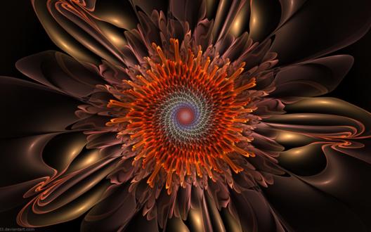Обои Спиральный цветок, абстрактная композиция на темном фоне