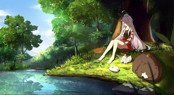 Обои Чия / Chiya из аниме Город предсказательниц / Urara Meirochou, с животными сидит возле дерева у воды