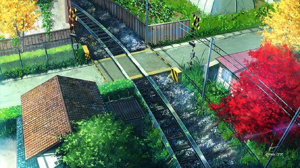 Обои Вид на железную дорогу сверху