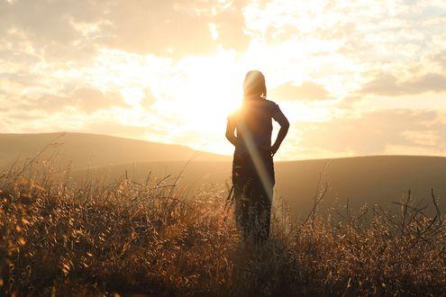 Обои Девушка в поле на фоне яркого солнца