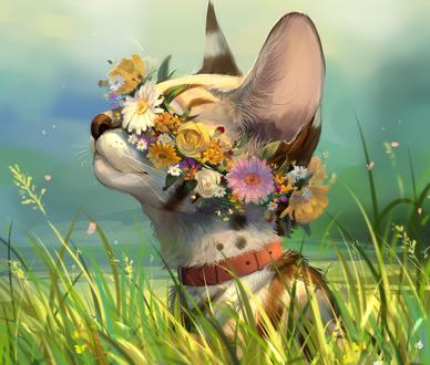 Обои Кошка с цветочным венком на голове, by Takiroku