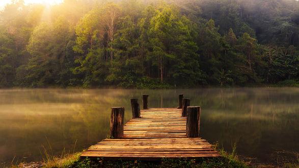 Обои Деревянный причал на лесном озере