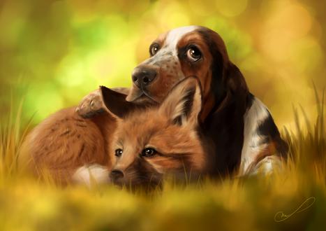 Обои Лисенок и щенок в траве, by Martith