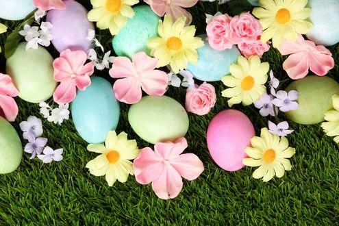 Обои Пасхальные яйца с цветами на траве