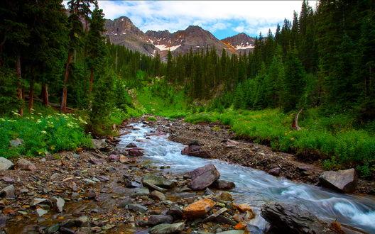 Обои Ручей среди заросших лесом холмов на фоне гор Sneffels Wilderness, штат Колорадо, США / Colorado, USA, фотограф Mickey Shannon
