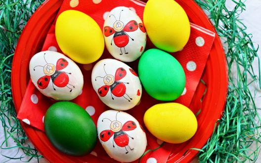 Обои Прикольные пасхальные крашенные яйца