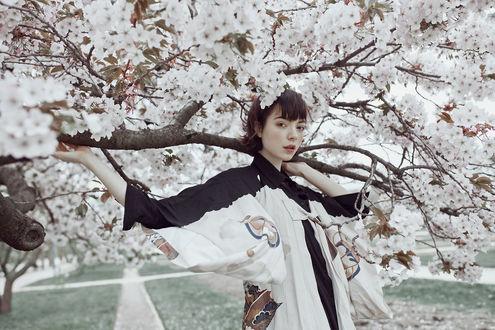 Обои Девушка стоит у весеннего цветущего дерева, MOTH ART