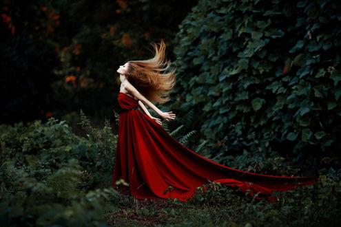 Обои Рыжеволосая девушка в красном платье на фоне природы, Фотограф Наталья Санникова
