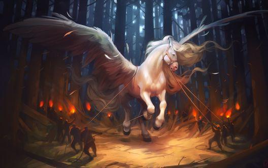 Обои Люди с факелами и канатами в ночном лесу пытаются поймать белого пегаса, художница Александра Хитрова