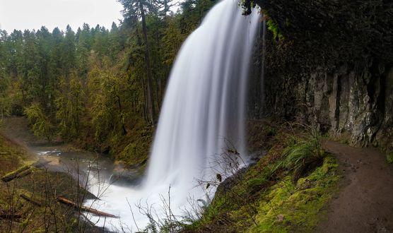 Обои Панорама Middle North Falls in Silver Falls State Park, Oregon, USA / Средние Северные Каскады в государственном парке Сильвер-Фоллс, штат Орегон, США, фотограф Brian Bonham
