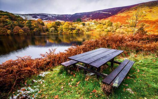 Обои Скамейка у небольшого лесного озера