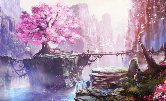 Обои Девочка стоит и смотрит на большое дерево цветущей сакуры, автор Rapt