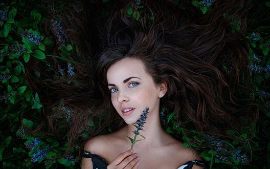 Обои Красивая девушка в цветах