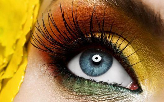 Обои Голубой глаз девушки с длинными ресницами
