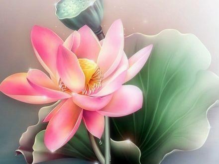 Обои Нарисованный в нежных тонах цветок лотоса