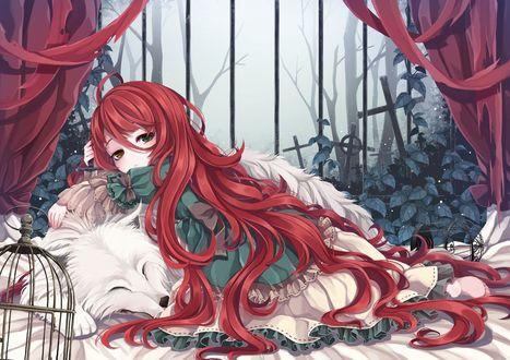 Обои Девушка лежит на белом волке