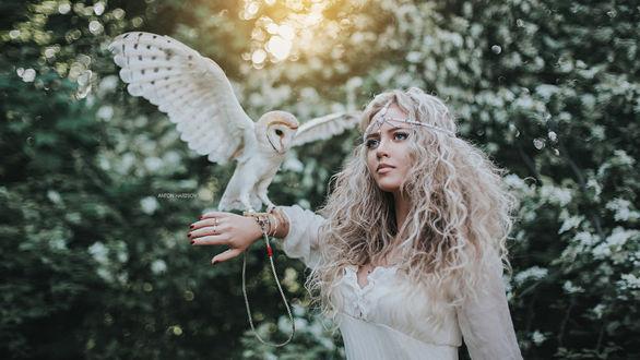 Обои Девушка с совой на руке, фотограф Антон Харисов
