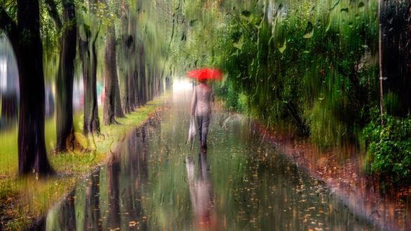 Обои Женщина с красным зонтом идет по дождливой улице, вид через стекло