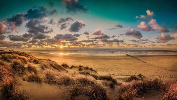 Обои Пляж вечером на закате
