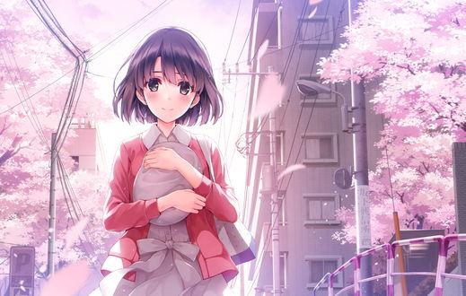 Обои Мэгуми Като / Megumi Katou из аниме Как воспитать героиню из обычной девушки / Saenai Heroine no Sodatekata
