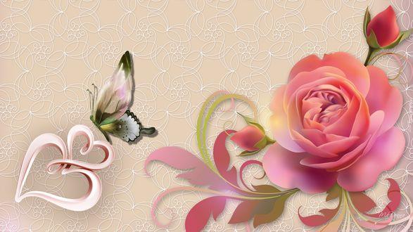 Обои Роза с бутонами и бабочка сидит на сердечке