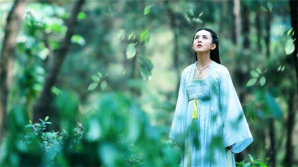 Обои Девушка смотрит вверх на фоне природы и падающих листьев