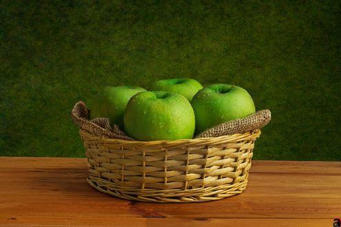 Обои Зеленые яблоки в каплях воды в корзинке, фотограф Abdularhman Adi