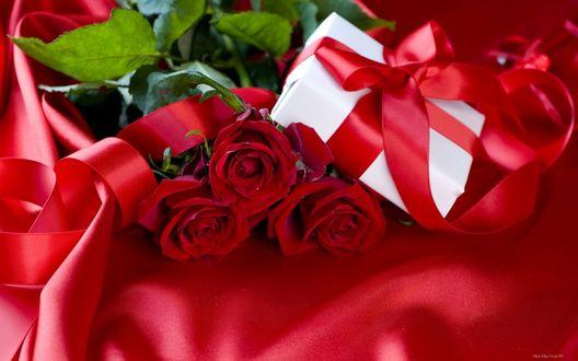 Обои Красные розы и белая коробка с красной лентой