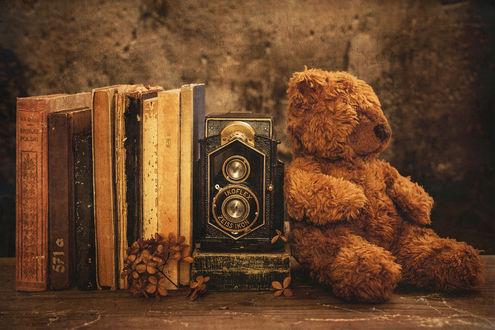 Обои Медвежонок Тедди рядом со старыми книгами и ретро фотоаппаратом, by Iwona Czubek