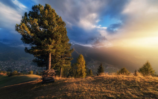 Обои Сосны на горном плато, на фоне вечернего неба, фотограф Александр Науменко