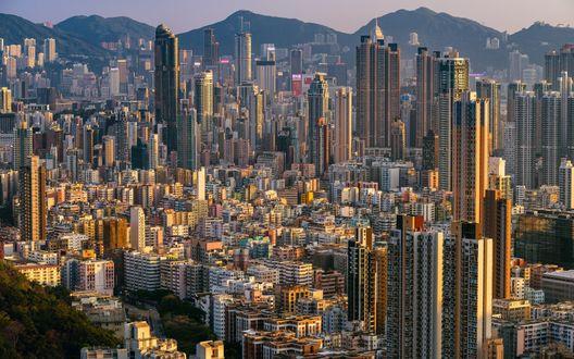 Обои Панорама города Гонконг, Китай