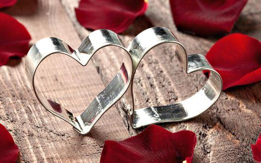 Обои Два серебряных сердца в лепестках красной розы