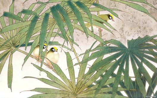 Обои Семья птиц в зарослях, японская живопись