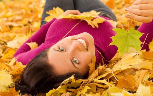 Обои Улыбающаяся темноволосая девушка в темно-розовом свитере лежит в желтых осенних листьях