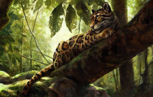 Обои Леопард лежит на дереве, by kenket