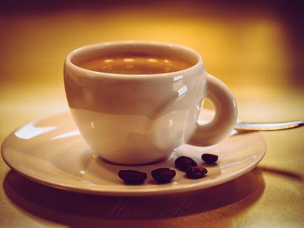 Обои Чашка и зерна кофе на блюдце