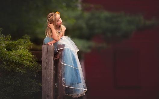 Обои Светловолосая девочка с цветком в волосах и в длинном голубом платье сидит на ограде
