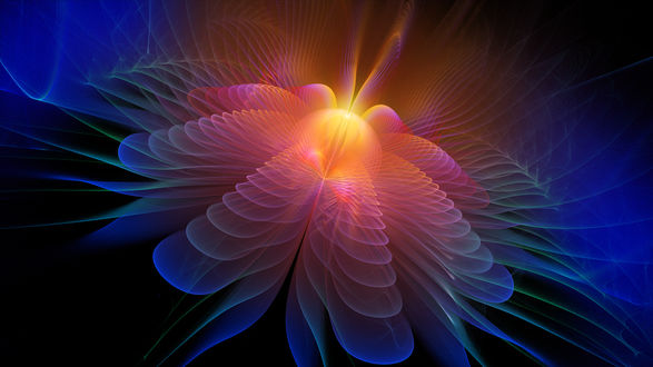 Обои Абстрактный цветок, автор Nathan Smith