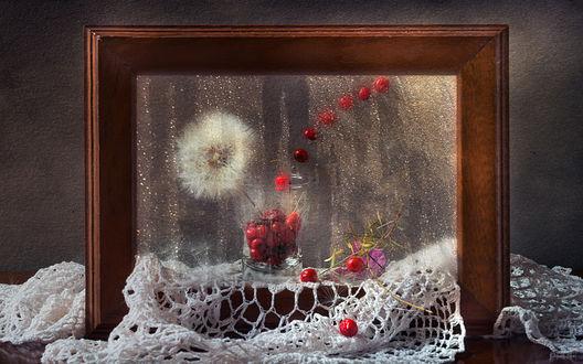 Обои Натюрморт из ягоды и одуванчика за мокрым стеклом, на белой шали, by Osvaldo Gon