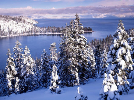 Обои Зимний пейзаж берега на фоне зимнего озера