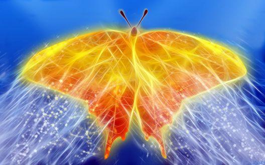 Обои Огненного цвета бабочка, покрытая сверкающей паутиной на размытом голубом фоне