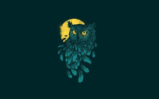 Обои Зеленая сова с ярко-желтыми глазами и луной на темно-зеленом фоне