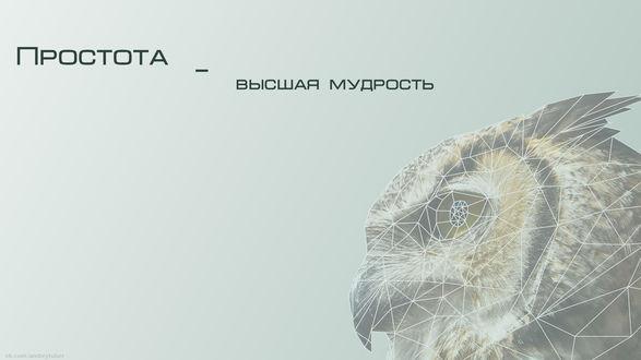 Обои Геометрическая сова в профиль (Простота - высшая мудрость)