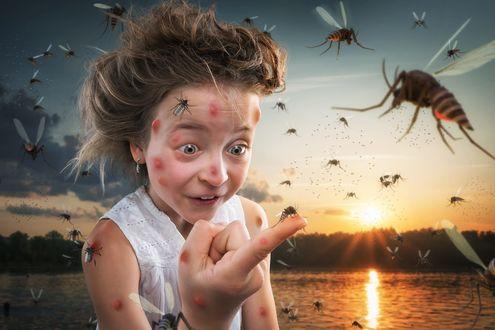 Обои Девочка удивленно смотрит на комарика на пальце, фотограф John Wilhelm