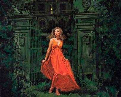 Обои Девушка в ярком платье стоит у ворот дома, by Joel Malmed