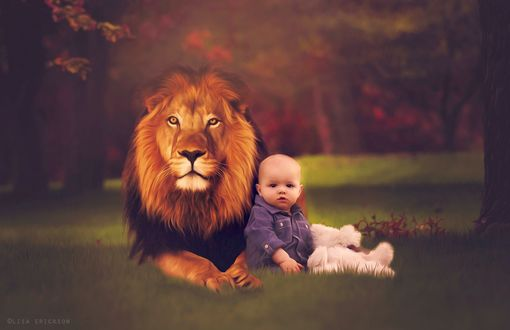 Обои Ребенок сидит на траве, опираясь на лежащего льва, на размытом фоне, by Lisa Erickson