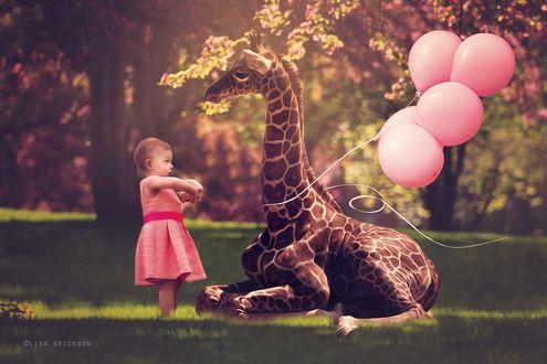 Обои Маленькая девочка со связкой воздушных шариков играет с лежащим на траве жирафом, на размытом фоне деревьев, by Lisa Erickson