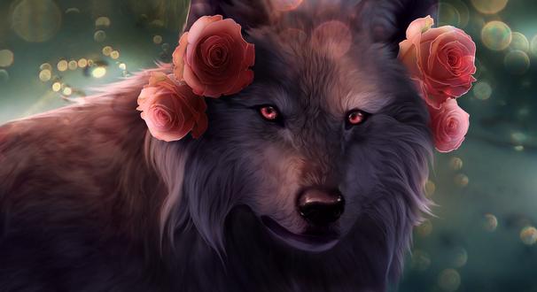 Обои Белый волк с розовыми розами на нем, by Nanarc