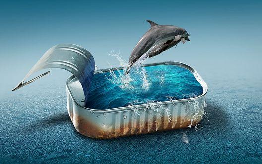 Обои Открытая консервная банка, заполненная водой, из которой выпрыгивает дельфин, на синем фоне